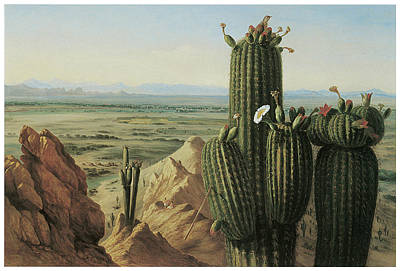 Mountain Valley Painting - View From Maricopa Mountain Near The Rio Gila by Henry Cheever Pratt