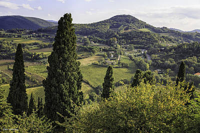 Photograph - View From Montepulciono by Fran Gallogly