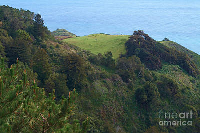 Photograph - View From Nepenthe In Big Sur by Charlene Mitchell