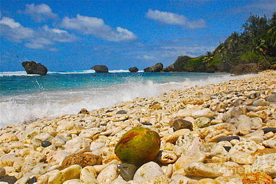 Art Print featuring the photograph View From The Coconut by Blake Yeager