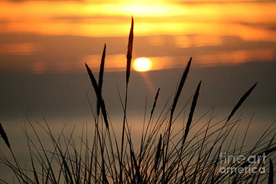 Photograph - View From The Dune by Deena Otterstetter