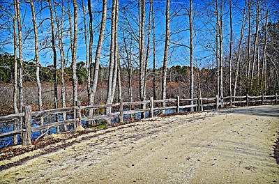 Photograph - View From The Path by Linda Brown