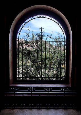 Photograph - View From The Window by Joe Kozlowski
