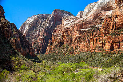 Photograph - View From Weeping Rock by Robert Bales