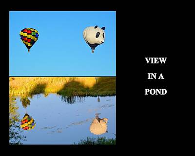 Photograph - View In A Pond by AJ  Schibig