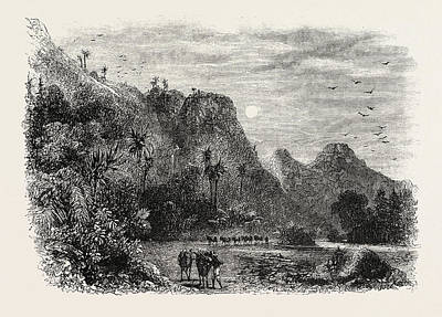 Outlook Drawing - View In Cuba, 1870s Engraving by Cuban School