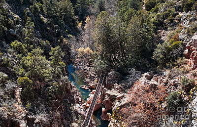 Photograph - View Into Pine Creek Canyon by Lee Craig