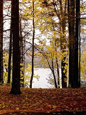 View Of  Lake Mcdonald Art Print