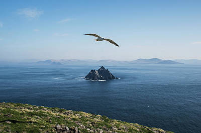 Photograph - View Of Little Skellig From Skellig by James Sparshatt / Design Pics