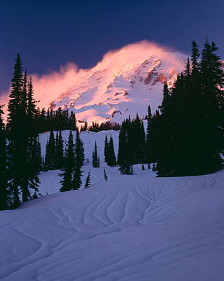 Mt Rainier National Park Photograph - View Of Mt Rainier In Winter, Mt by Panoramic Images
