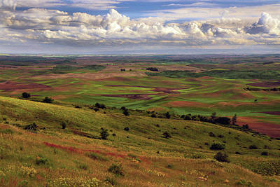 Whitmans Photograph - View Of Palouse From Steptoe Butte by Michel Hersen
