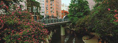 View Of San Antonio River Walk, San Art Print