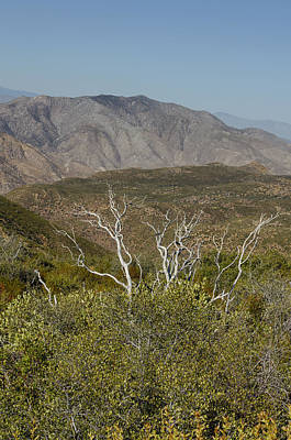 Photograph - View Of Storm Canyon California by Marianne Campolongo