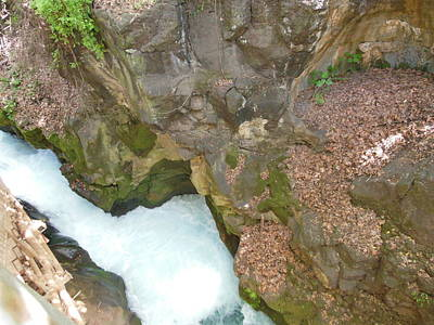 Photograph - View Of The Banias From Above by Esther Newman-Cohen