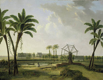 Plantation Drawing - View Of The Coffee Plantation Meerzorg by Litz Collection