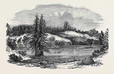Outlook Drawing - View Of The Country Near Russian River by English School