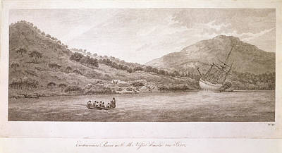 The Country Photograph - View Of The Endeavour River by British Library