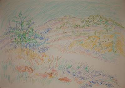 Drawing - View Of The Jerusalem Forest by Esther Newman-Cohen