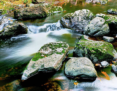 Porcupine Photograph - View Of The Little Carp River by Panoramic Images