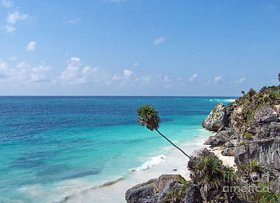 Photograph - View Of The Ocean At Tulum by Tom Doud