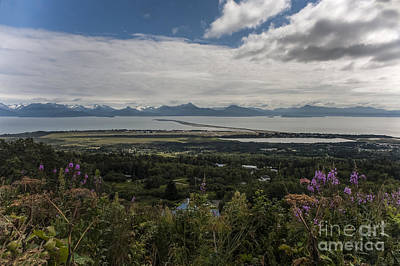 Photograph - View On Homer And The Spit In Alaska by Dan Friend