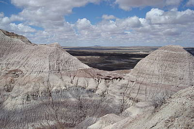 Photograph - View On The Blue Mesa Trail by Susan Woodward