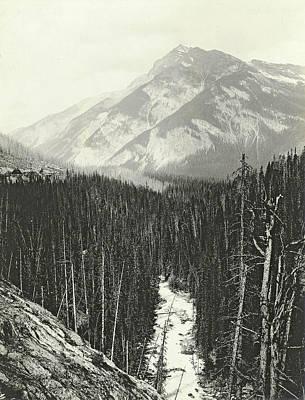 View Over Kicking Horse Canyon Art Print