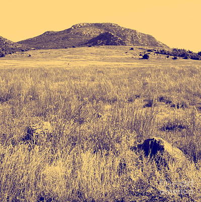 View To A Mountain Art Print by Mickey Harkins