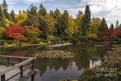 Koi Photograph - View To The Fall Japanese Garden by Mike Reid