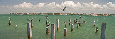 Cabbage Photograph - View Toward Cabbage Key From St by Panoramic Images