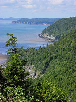 Photograph - Views From The Fundy Trail by Georgia Hamlin