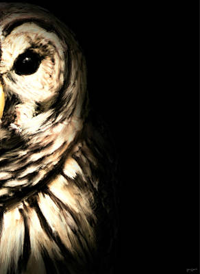 Owls Photograph - Vigilant In Darkness by Lourry Legarde