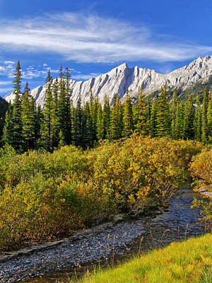 Photograph - View From Maligne Valley by Carolyn Derstine