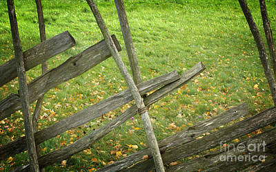 Village Fence Art Print by Jolanta Meskauskiene