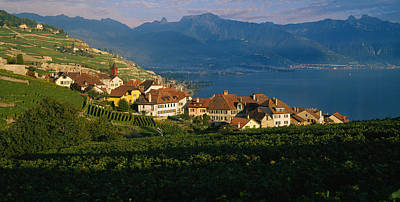 Village On A Hillside, Rivaz, Lavaux Art Print by Panoramic Images