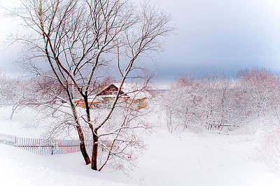 Photograph - Village Under The Snow. Russia by Jenny Rainbow