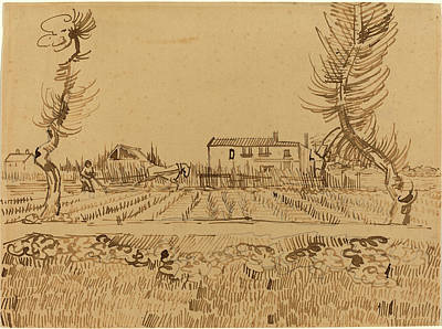 Vincent Van Gogh Drawing - Vincent Van Gogh, Dutch 1853-1890, Ploughman In The Fields by Litz Collection