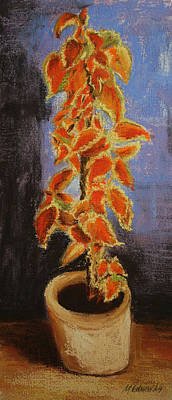 Pastel - Vincent's Coleus In Pastels by Marna Edwards Flavell