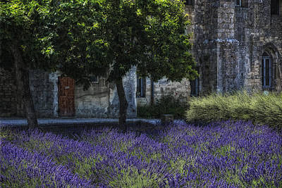 Vincents Garden Art Print