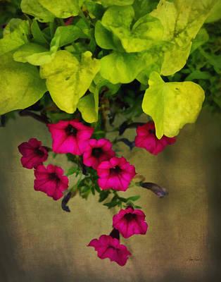 Digital Art - Vine And Flowers by Ann Powell