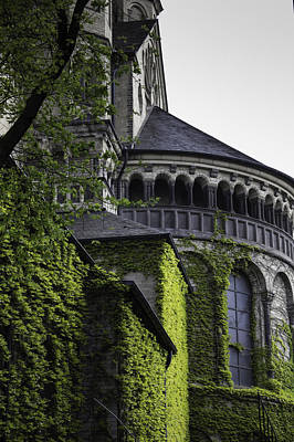 Tlk Designs Photograph - Vine Covered Church Cologne by Teresa Mucha