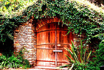 Photograph - Vine Covered Doorway by Robert  Rodvik