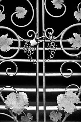 Photograph - Vine Gate by Niels Nielsen