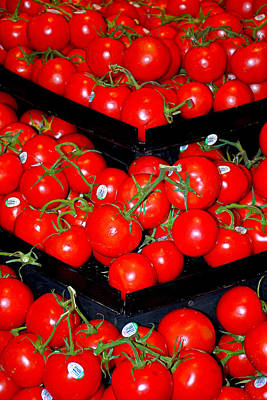 Photograph - Vine Ripened Tomatoes by Robert Meyers-Lussier