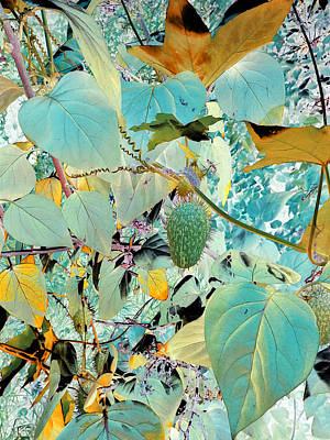 Photograph - Vines And Things by Joanne Smoley