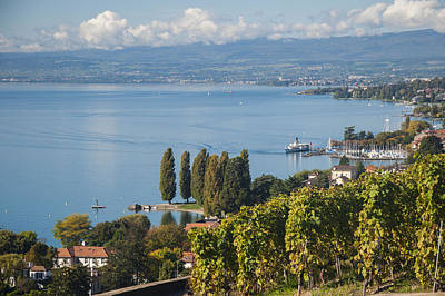 Vines Over Lake Geneva Art Print