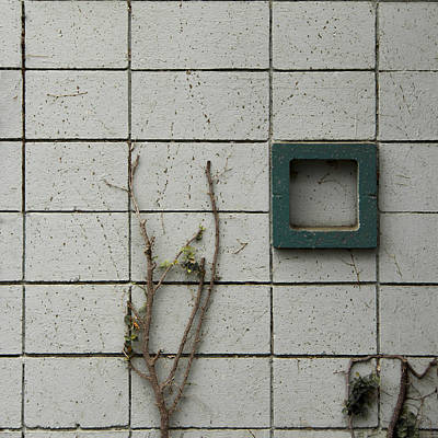 Minimalism Photograph - Vinetastic by Lee Harland