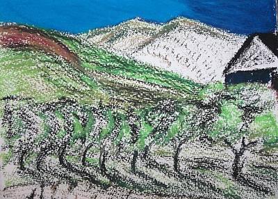 Vineyard Art Print by Charlotte Williams