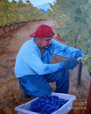Vineyard Harvest Iv Art Print by Donna Schaffer