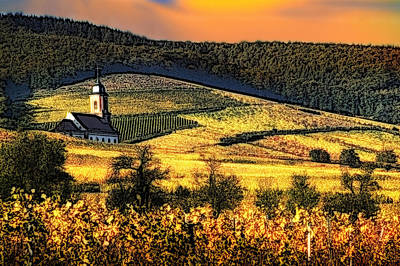 Photograph - Vineyard In Autumn by Selke Boris